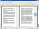 Open Office 3 Writer Multiple View